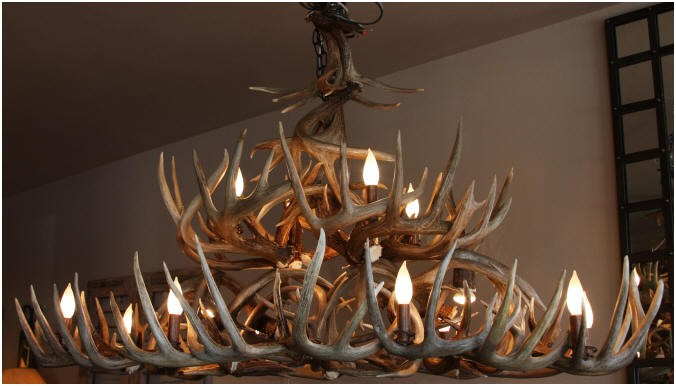 Large whitetail antler chandelier
