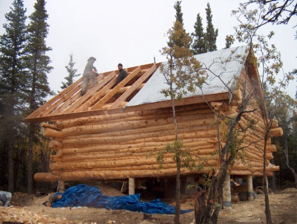 Building a log cabin the gables and the roof construction for Building a cabin in alaska