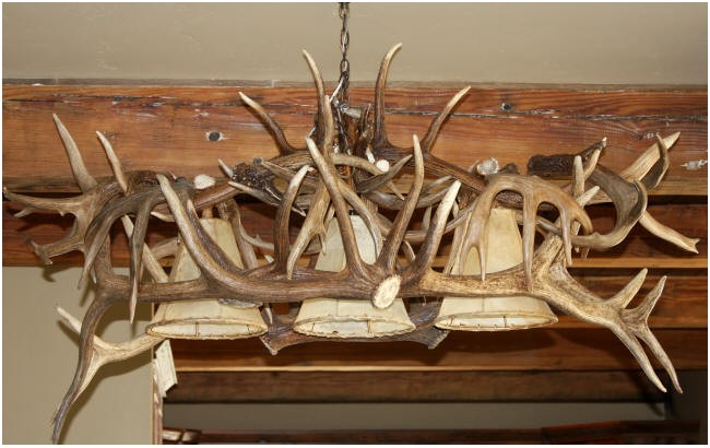 elk and deer antler chandelier